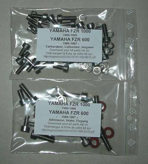 Yamaha Fzr Replace Carburetors